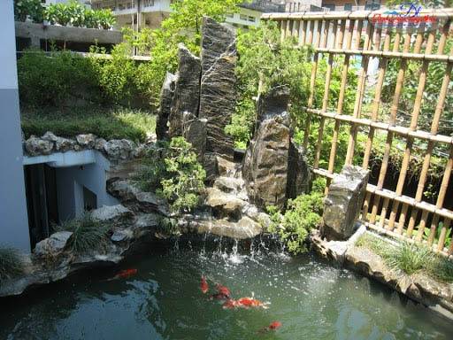 Hồ cá koi sân vườn Nha Trang